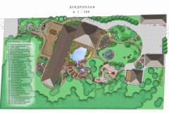 Dendro_plan