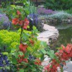 Строительство водоемов — пруд, ручей, каскад