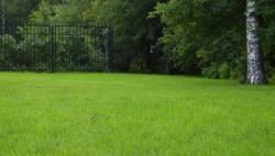 газоны под ключ