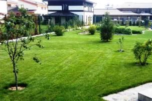 подарки - рулонный газон