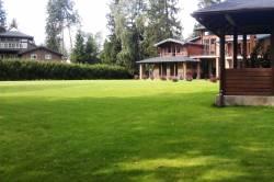 Сколько стоит постелить газон