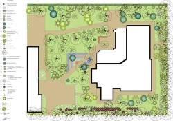 разработка плана озеленения
