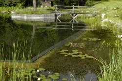 пруд купальня