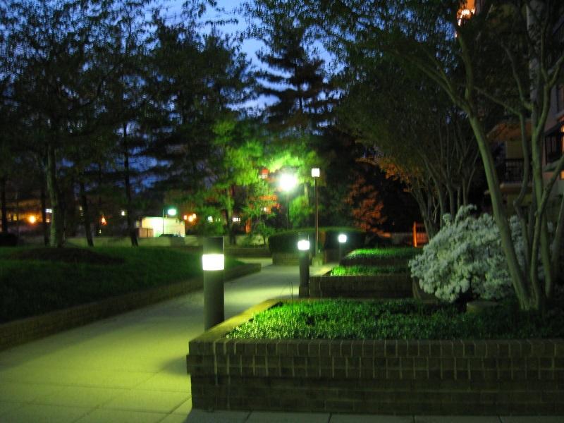 фонарики на дорожках