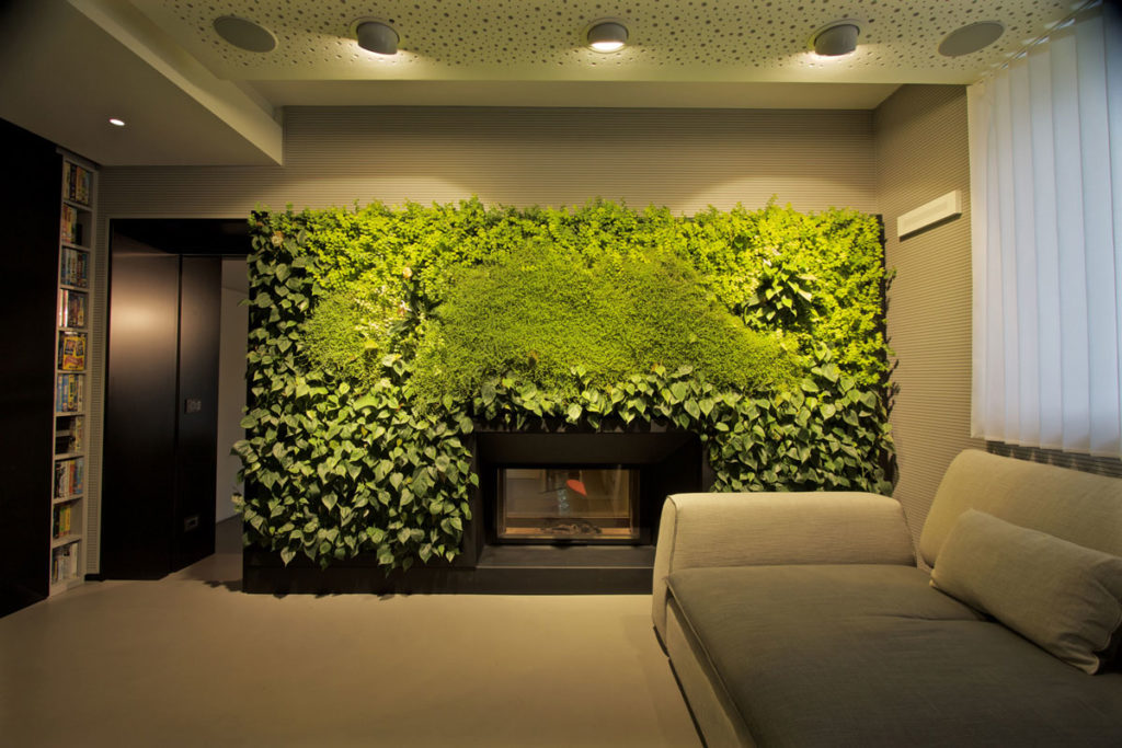 Какие растения подойдут в вертикальном саду